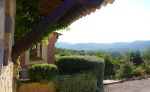 Provence views vineyard Saint Tropez holiday rental villa